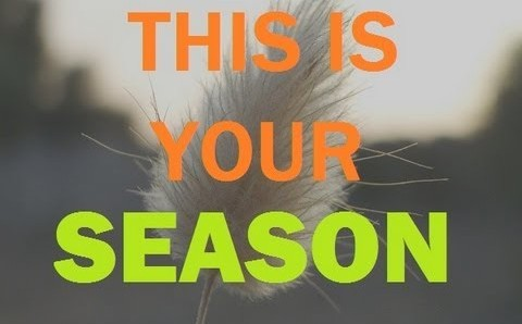 This is your SEASON!